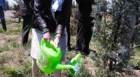 Kaz    Dağları'ndaki biyoçeşitlilik korunacak..