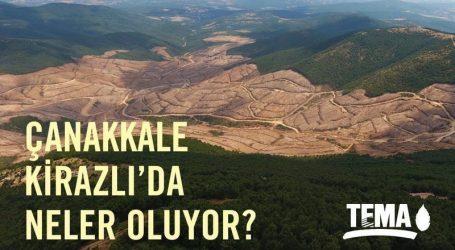 Kazdağı nda (195.000) ağaç kesildi