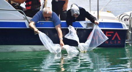 Büyükşehir  den balıklandırma çalışmaları
