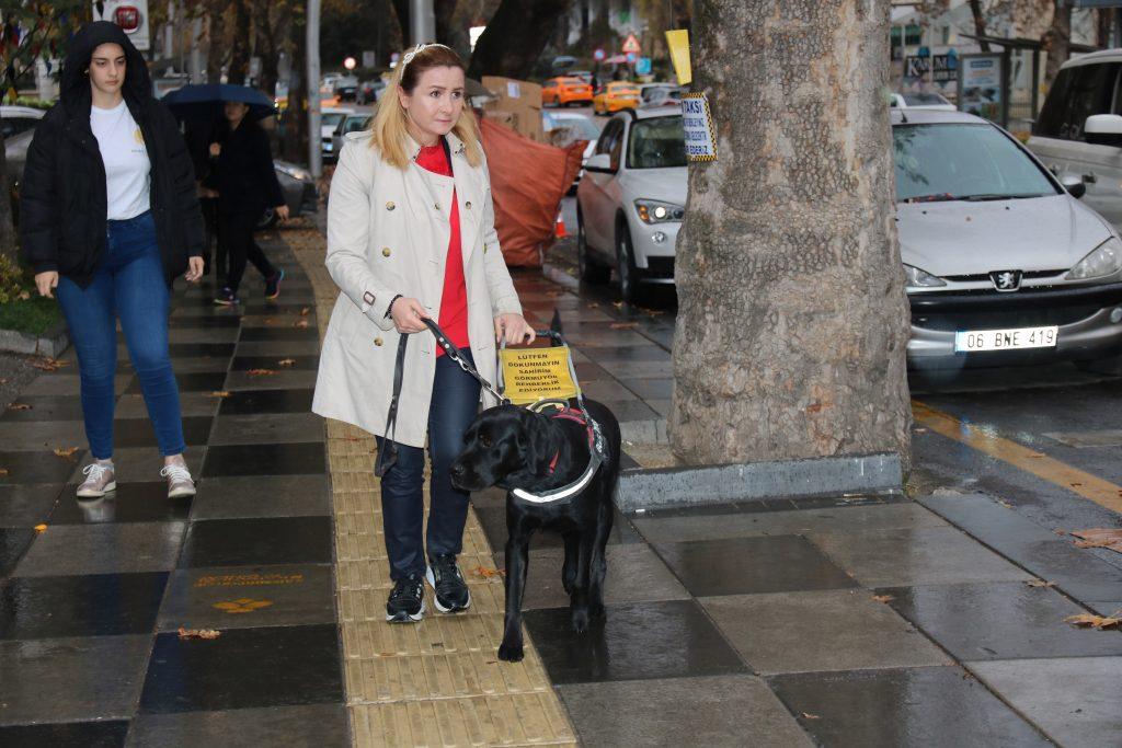 2019_11_26_Sosyal Yardım_Rehber Köpekler (1)