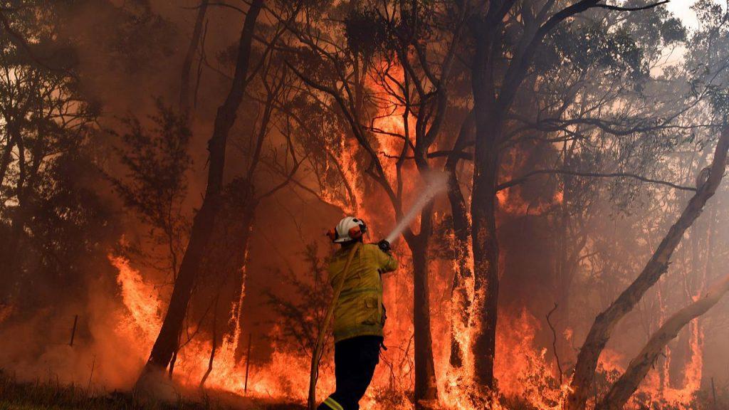 GORSELavusturalya yangını