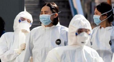 Güney Kore'nin mücadele yöntemleri neden örnek gösteriliyor?