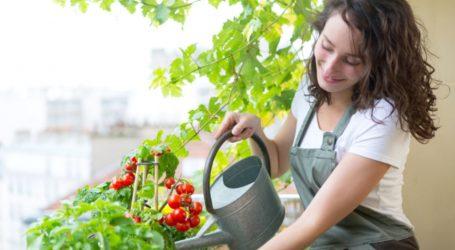 COVID-19 döneminde bahar yorgunluğuna iyi gelecek 7 öneri