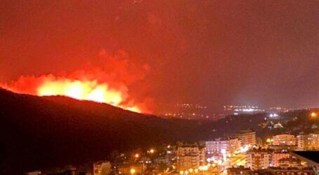 Hatay da ORMAN  yangını şehre sıçradı